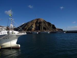 穏やかな湾内には海鳥が(昆布森漁港)