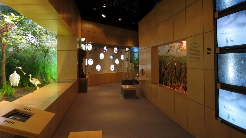 びっくりするほどの展示充実、タンチョウと酪農の村、鶴居の文化拠点「ふるさと情報館」